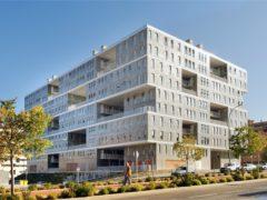Celosia Building